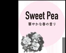 Sweet Pea 華やかな春の香り